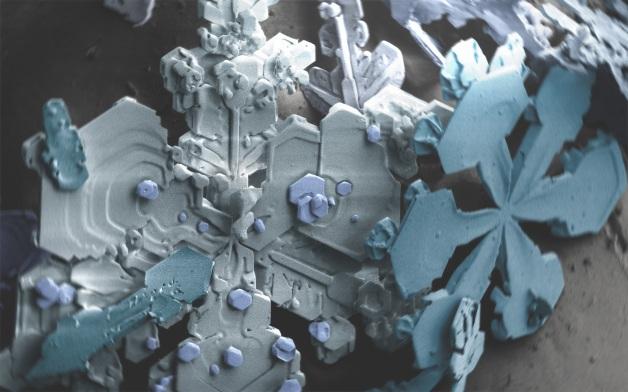 snowcrystalskx1